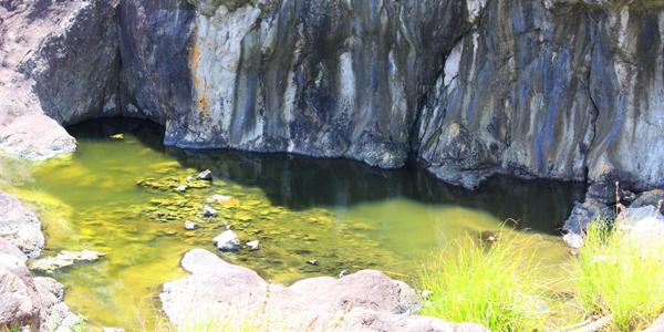 #弘法大師行水の池